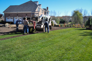 CLC Landscape Design, laying sod