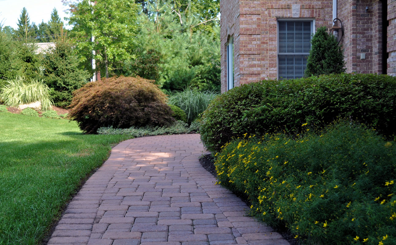 before and after landscape pictures, after, paver walkway with foundation plantings