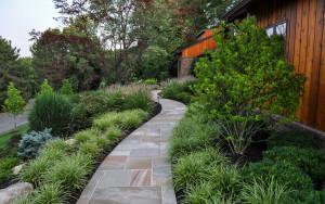 NJ Landscape Design, foundation planting