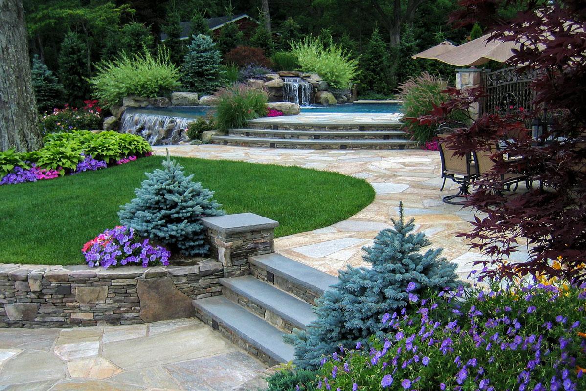 pool landscape including rozanne geranium montgomery blue spruce barley rose grass - nj
