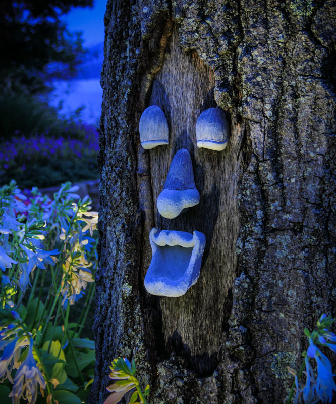 tree art with uplighting