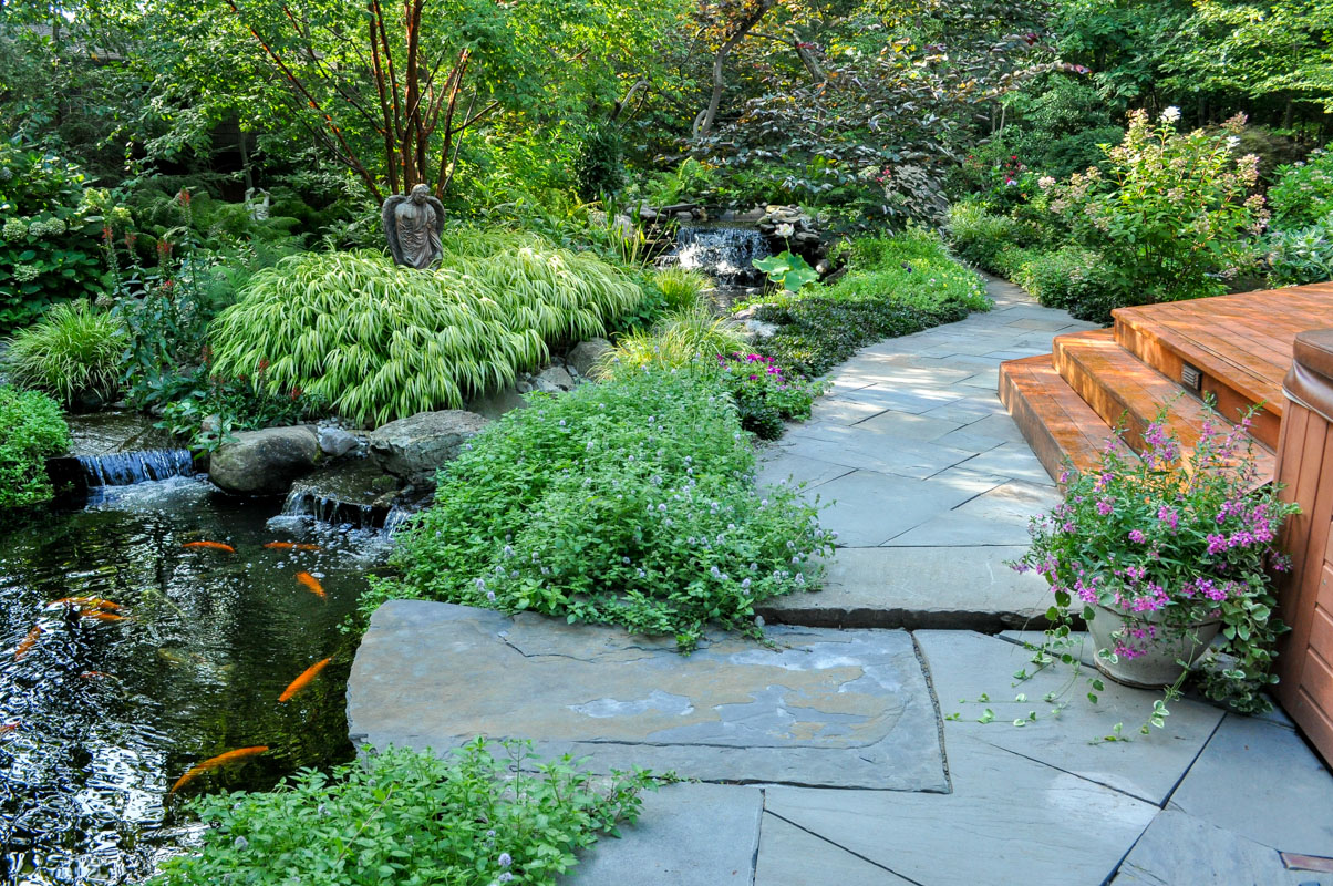 bluestone walkway, plant design