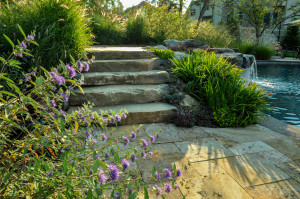 ornamental_planting_new jersey_clc_landscape_design_38
