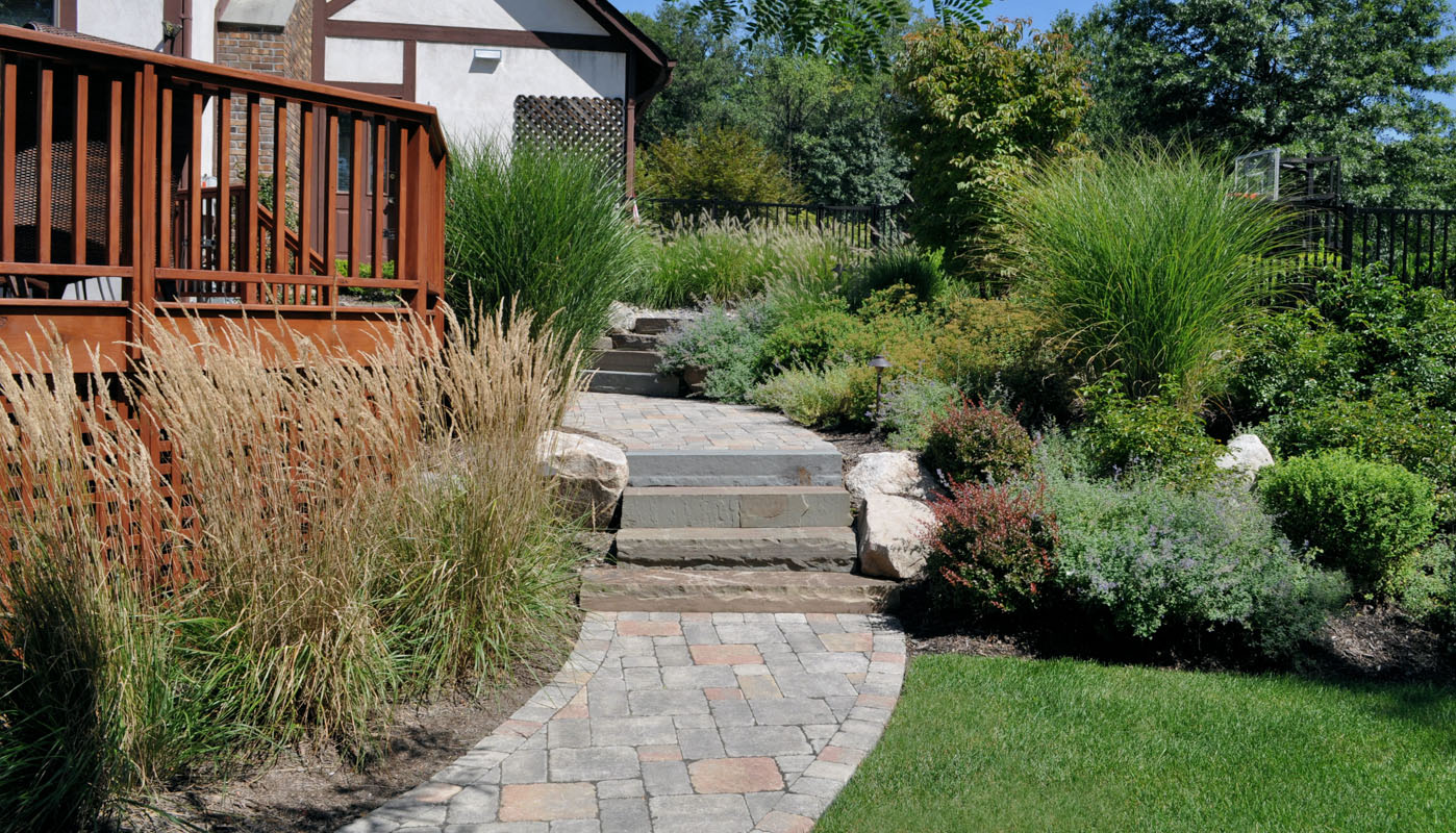 ornamental grasses, shrubs, walkway planting