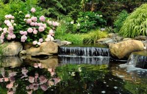 Ringwood, NJ, water garden