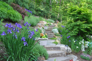 rockaway_new_jersey_landscape_design_backyard_makeover_05