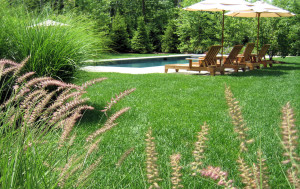 custom swimming pool design, NJ landscape design