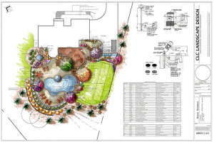 colorized landscape design plan