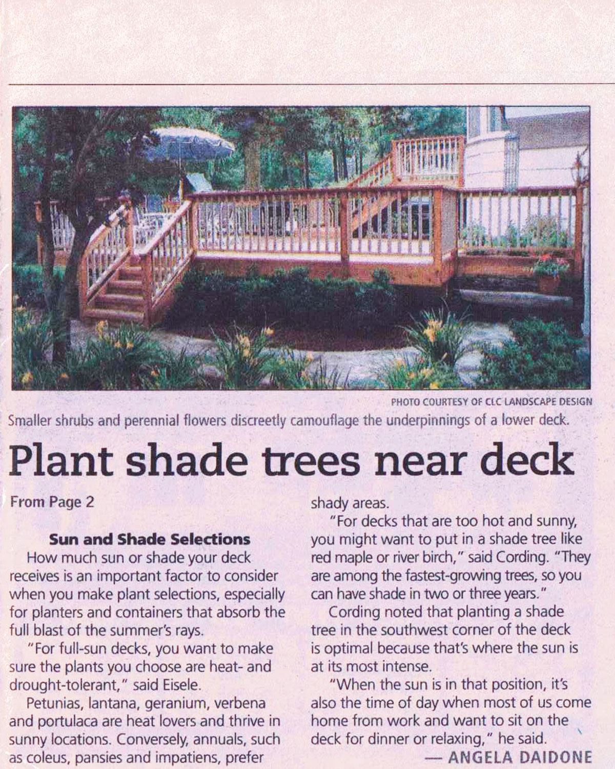 The Record - Plantings Around NJ Deck (page 2)