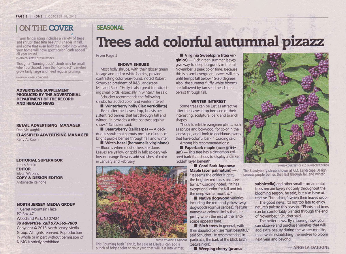 The Record - Best Plants For Fall Color in NJ (page 1)