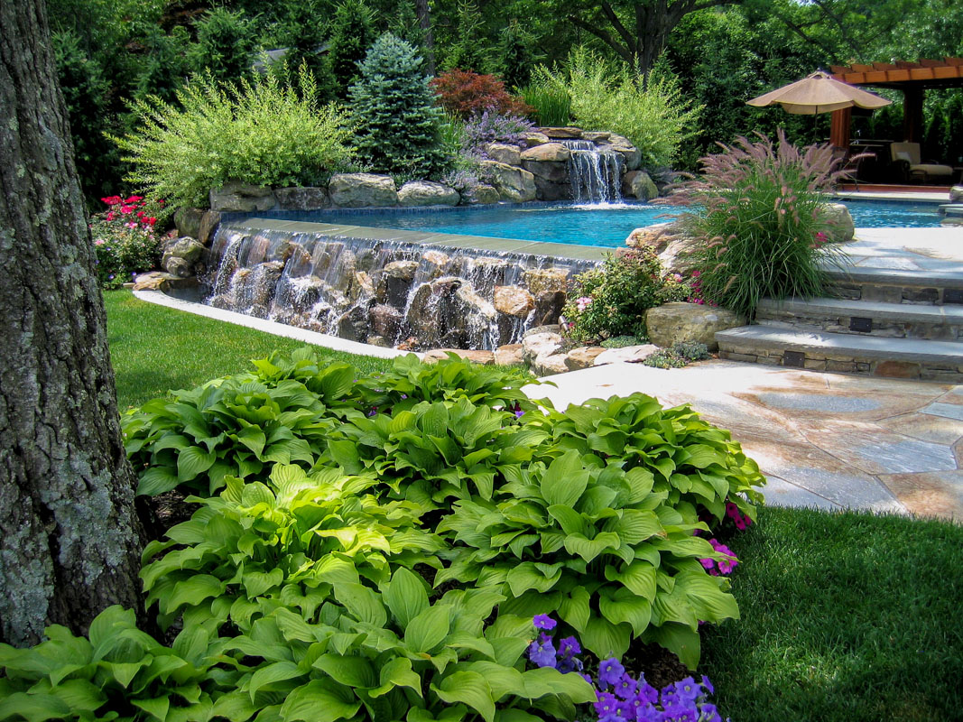swimming pool landscape plantings nj