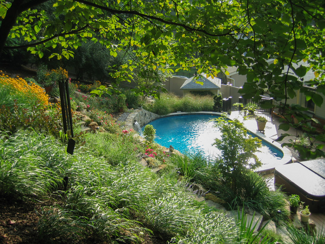 hillside planting design, steep slope, swimming pool