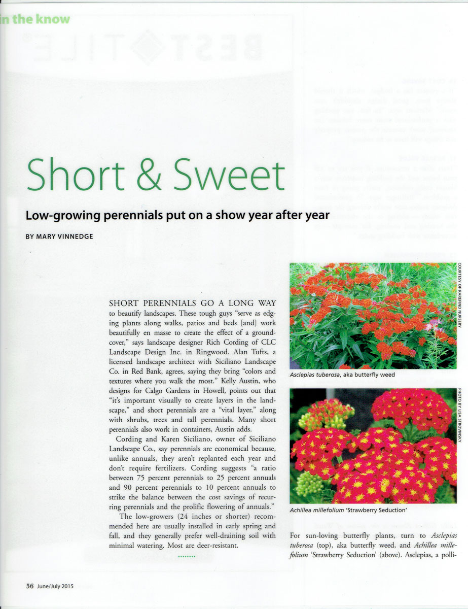 First page of Design NJ article on low-growing perennials featuring CLC Landscape Design