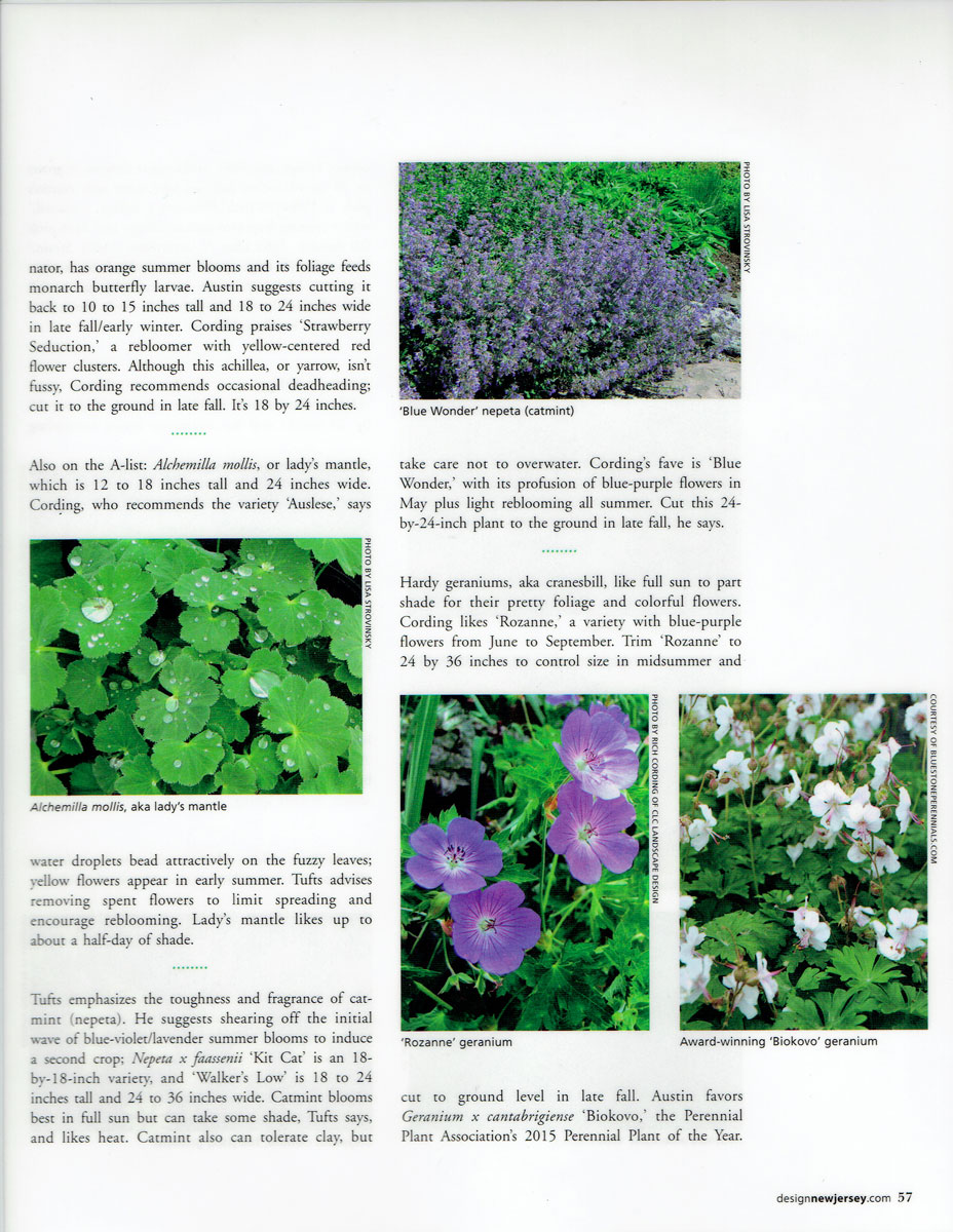 Second page of Design NJ article on low-growing perennials featuring CLC Landscape Design