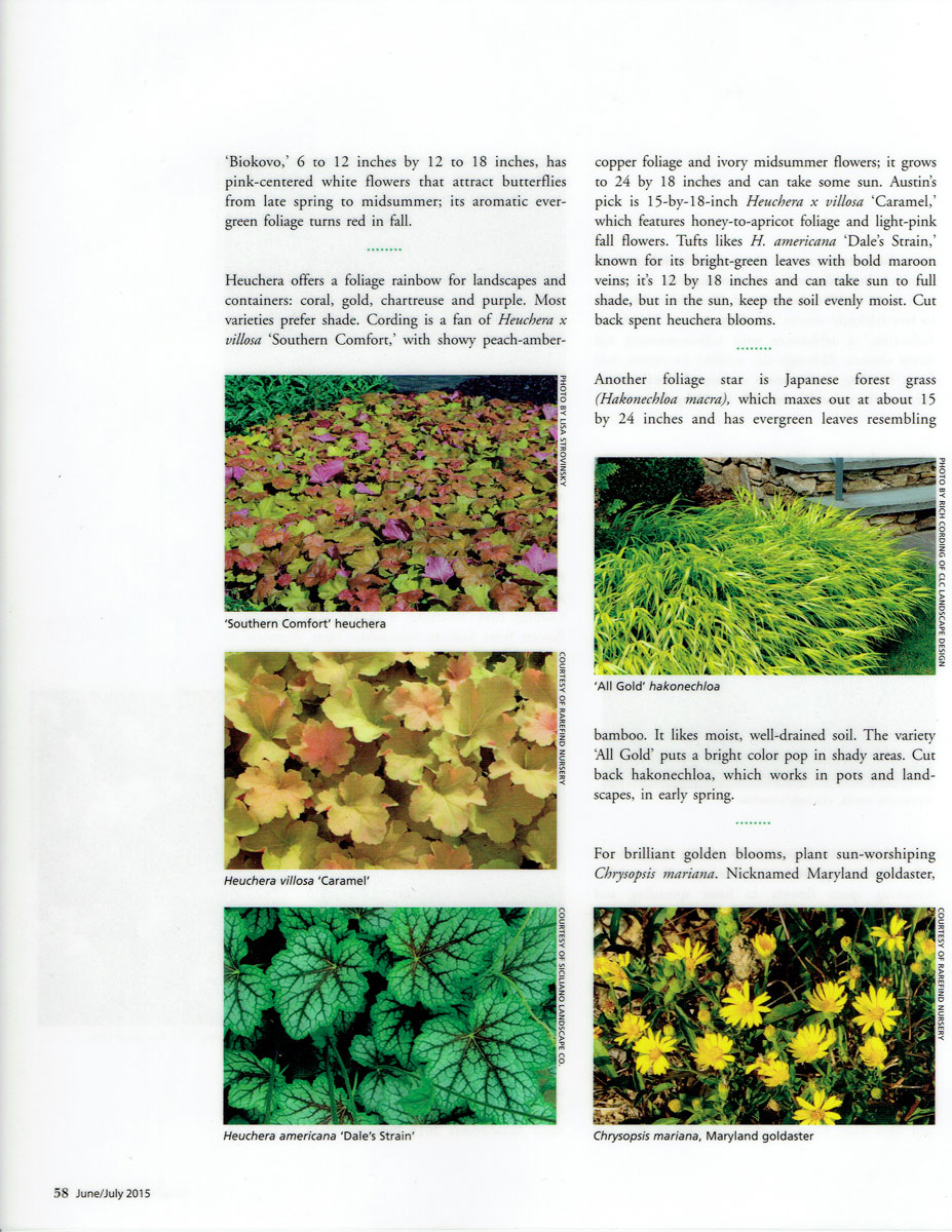 Third page of Design NJ article on low-growing perennials featuring CLC Landscape Design