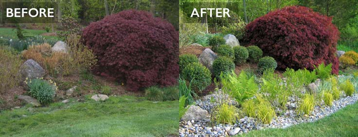 before and after photo of rain garden