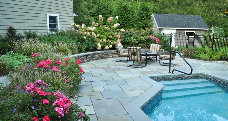 rozanne geranium used in new jersey pool landscape