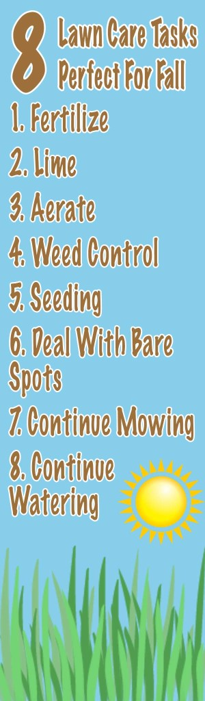 fall lawn care tips infographic