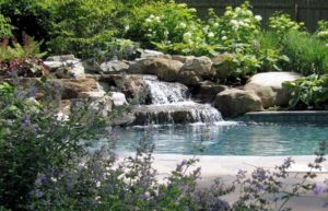 ornamental planting with pool waterfall