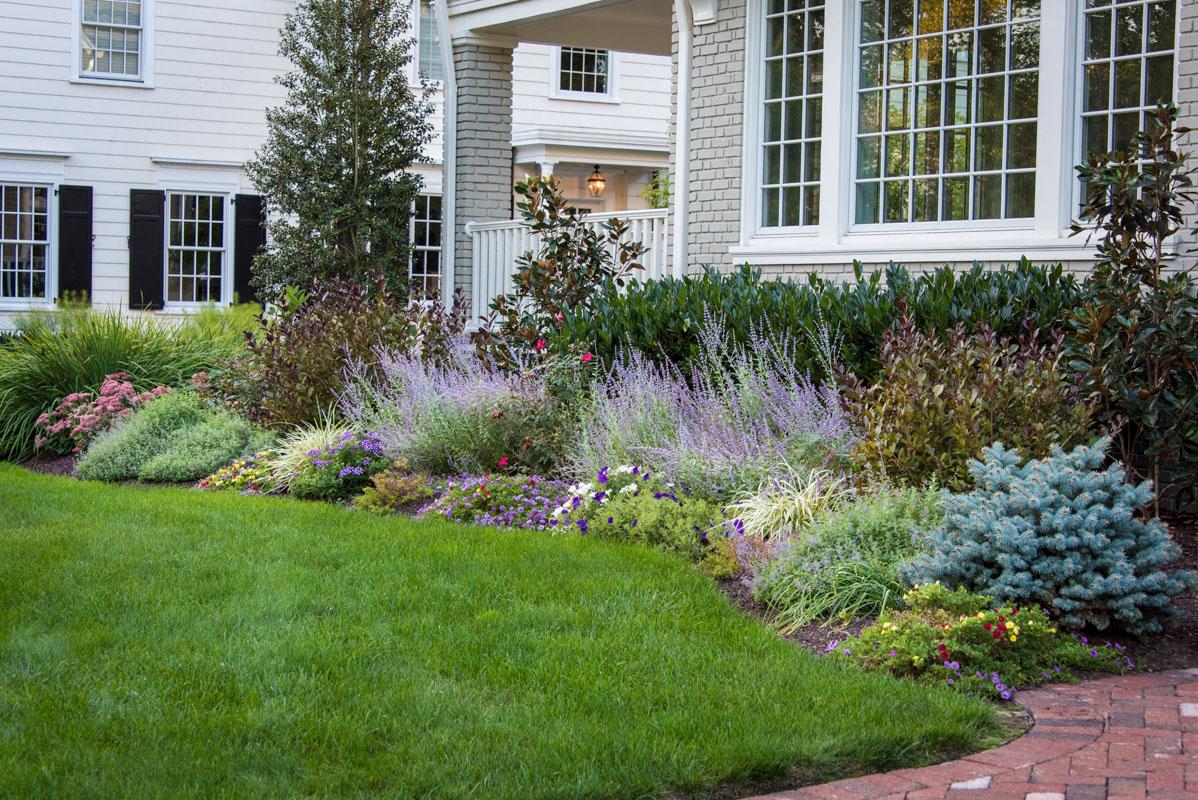 Montclair Luxurious Backyard Clc Landscape Design