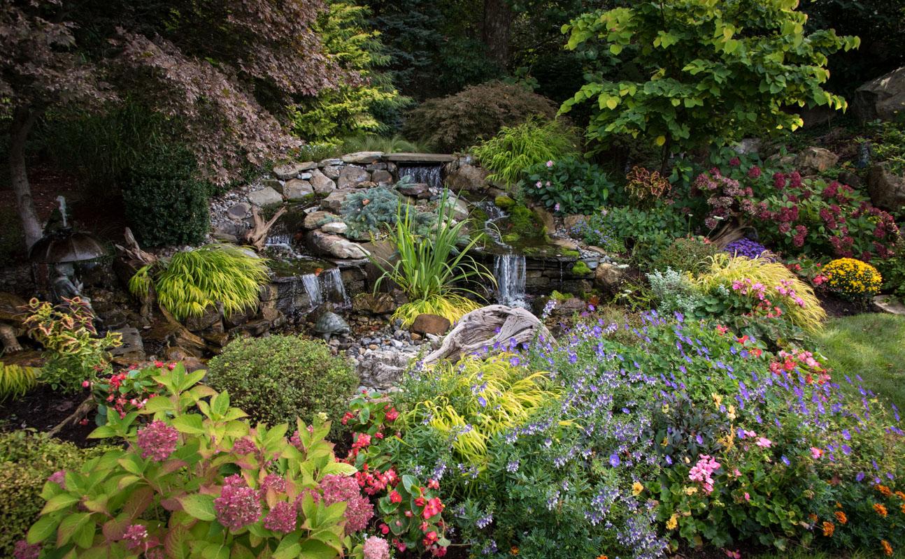 Montville Colorful Gardens Clc Landscape Design