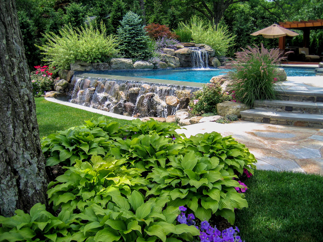 Ornamental Plantings 1 Clc Landscape Design